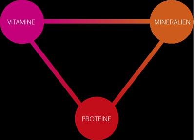 Grafik Kapselpräparate